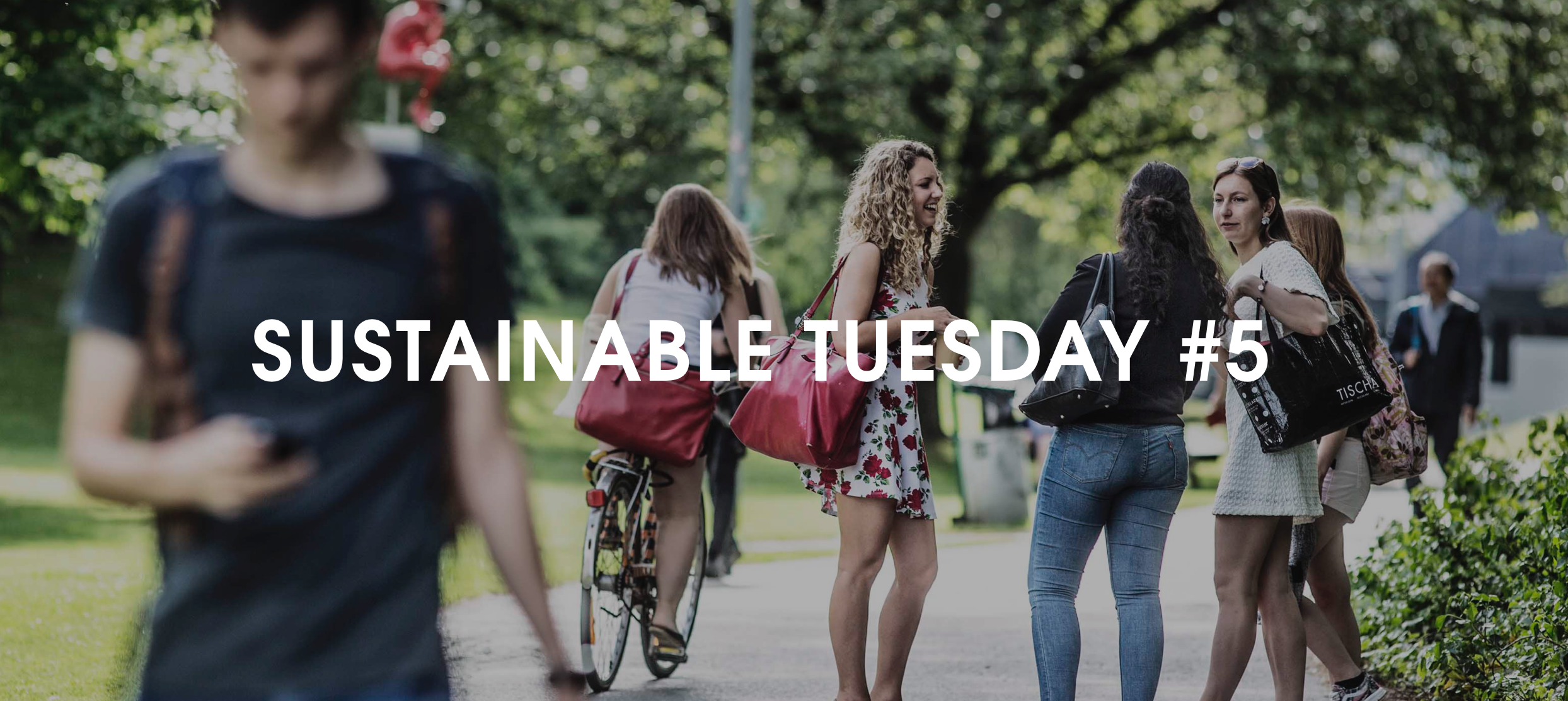 Sustainable Tuesday